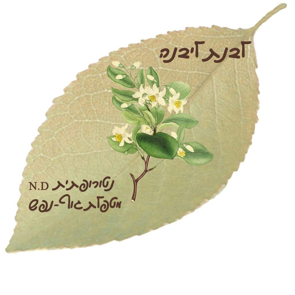 לבנת ליבנה - לוגו